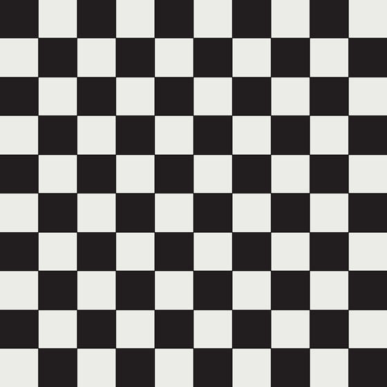 Ennerdale 100 Black/White